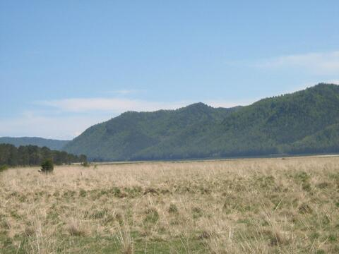 Великолепное место для отдыха и уединения с природой. Большая Речка. - Фото 3