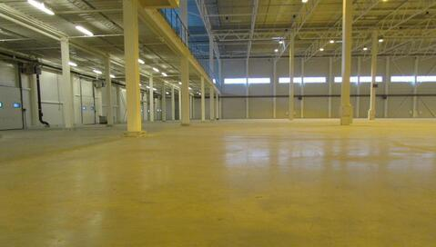 Сдам производство-складские площади 20 000 кв.м. - Фото 4