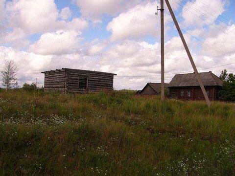 15 соток в д.Макарово(Верещюгино), Клепиковского района. - Фото 3