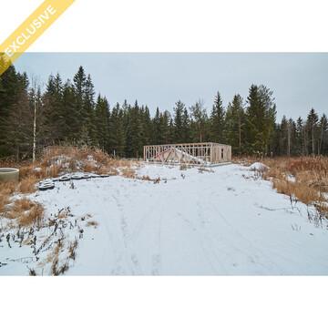 Продажа земельного участка 15 сот. в п. Чална - Фото 4