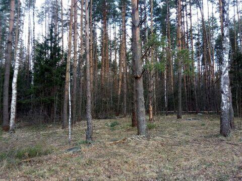 Земельный участок деревня Аксиньино 12 соток - Фото 1