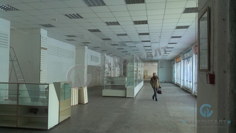 Аренда торгового помещения 1200 кв.м - Фото 3