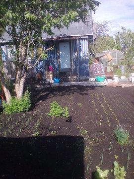 Продаю садовый участок - Фото 5