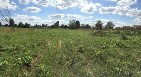 Продается земельный участок в деревне. - Фото 2