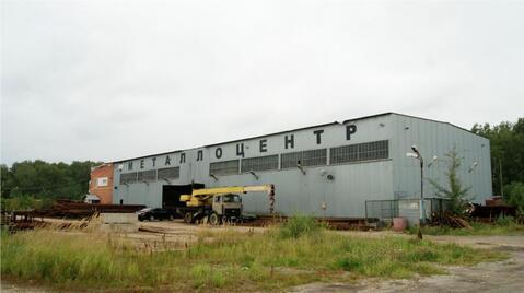 Продажа склада, 1200 м2, Симферопольское ш, 25км от МКАД - Фото 3