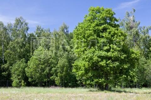 Лесной участок 57 сот. - Фото 1