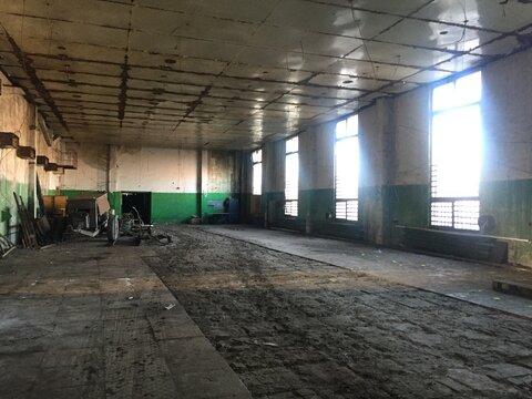 Производственное здание 1752 кв.м - Фото 3