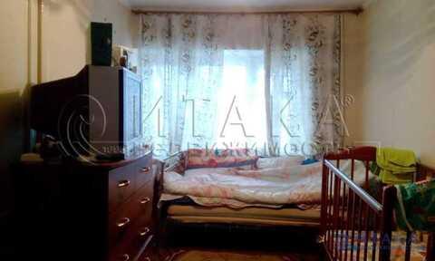 Продажа квартиры, Калитино, Волосовский район - Фото 3