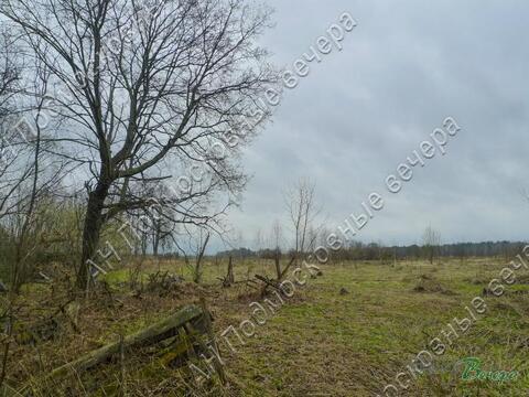 Симферопольское ш. 128 км от МКАД, Трубецкое, Участок 31 сот. - Фото 1