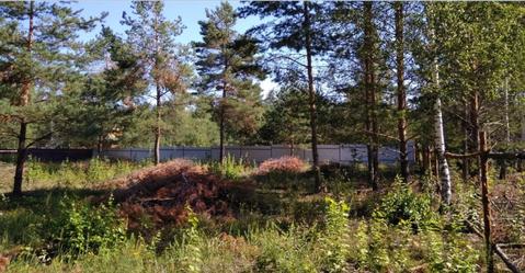 Судогодский р-он, Улыбышево п, Спутник, земля на продажу - Фото 1