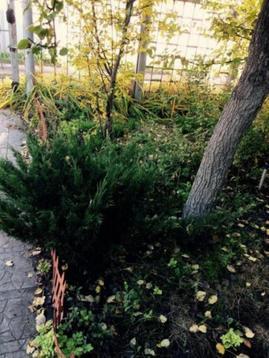 Продажа дачи, Старый Оскол, Ул. Кукушкин хутор - Фото 5