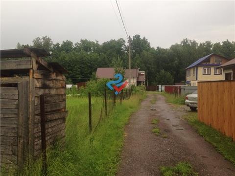 Чернозерский кордон , Сосновый бор - Фото 5