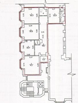 Продается квартира в Петергофе - Фото 5