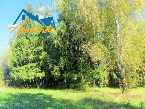 Продается земельный участок в деревни Нара Жуковского р-на Калужской о - Фото 3