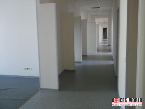 Офис, 370 кв.м. - Фото 2