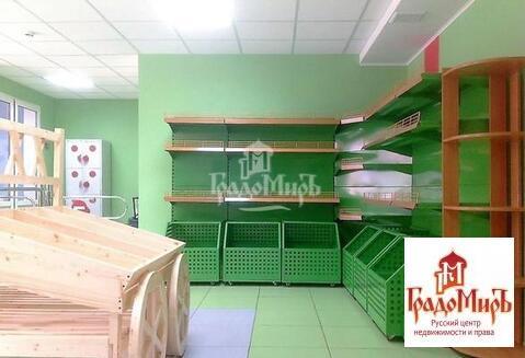 Продается коммерческое помещение, г. Пушкино, Набережная - Фото 2