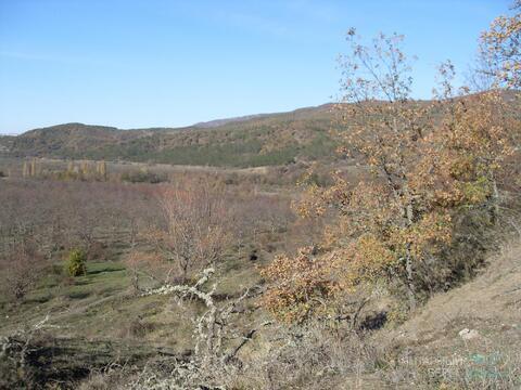 Продается участок 2,1 га в с. Богатырь, Бахчисарайский р-н, Крым - Фото 3