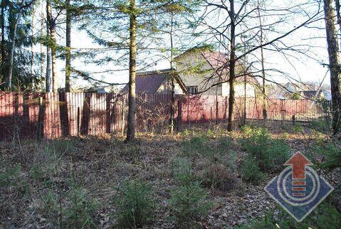 Земельный участок на лесной опушке в СНТ Родничок у д. Порядино - Фото 5