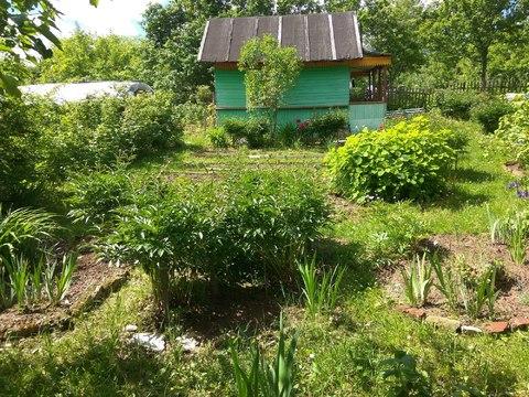 Дачный дом на участке 6сот - Фото 2