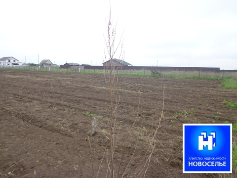 Продам земельный участок в Рязанском районе - Фото 3