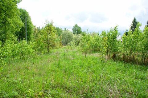15 соток в деревне Васильевское Волоколамского р-на. 125 км. от МКАД. - Фото 3