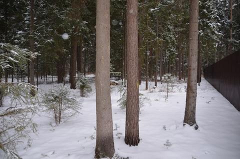 Лесные участки в кп Самар-1 - Фото 1