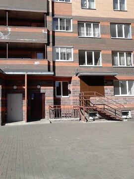Студия в новом доме в Тосно - Фото 1