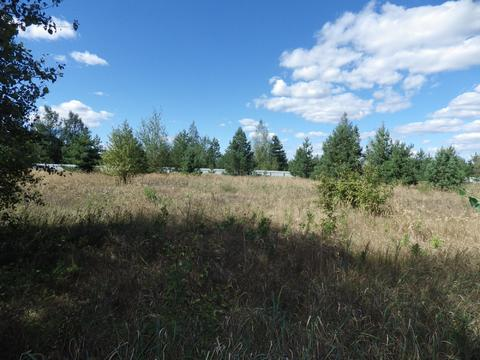 Продам земельные участки в закрытом коттеджном поселке в селе Малинино - Фото 4
