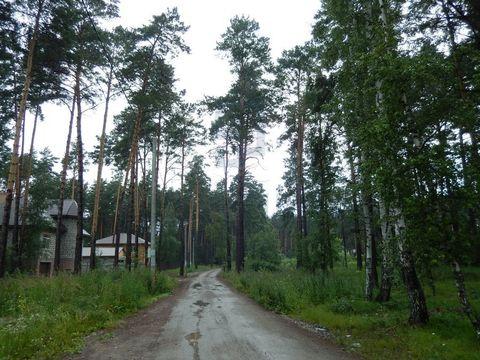 Продажа участка, Приобский, Новосибирский район - Фото 4