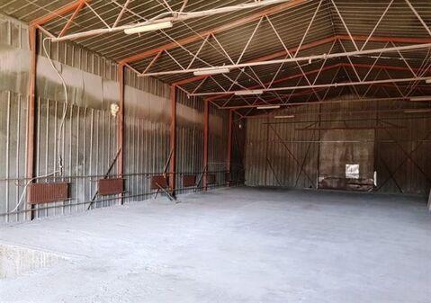 Сдам складское помещение 440 кв.м, м. Старая деревня - Фото 2