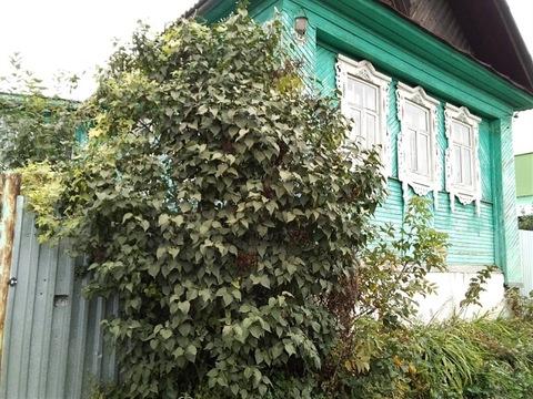 Продам дом ул.пер.Короткий д.79а - Фото 1