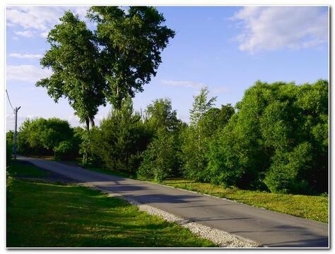 Прекрасный участок 14 соток для вашего дома в Акиньшино ! - Фото 4