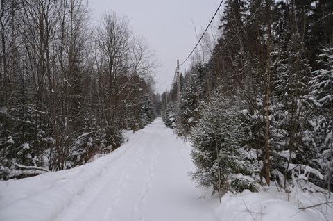 Лесные участки в кп Самар-1 - Фото 4
