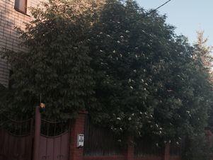 Аренда дома посуточно, Казань, м. Проспект Победы, Улица Айбагар - Фото 1