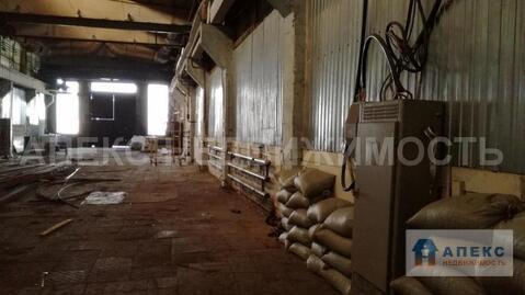Аренда помещения пл. 770 м2 под производство, склад, , Пушкино . - Фото 3