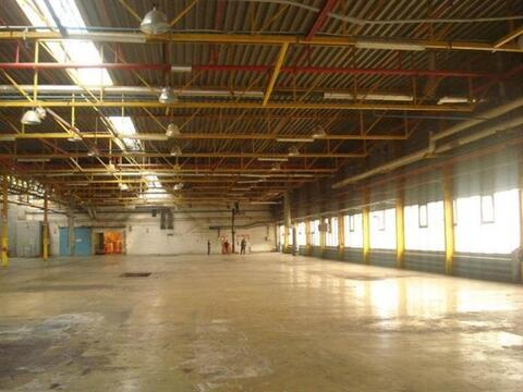 Сдам складское помещение 2000 кв.м, м. Бухарестская - Фото 1
