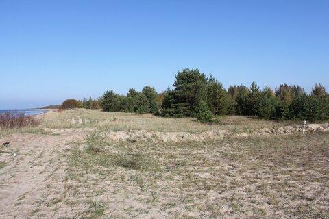 Участок под строительство на первой линии Чудского озера - Фото 1