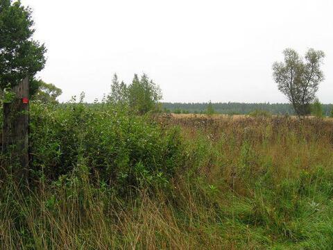 28 соток в д.Шопино, Клепиковского района, Рязанской области. - Фото 1