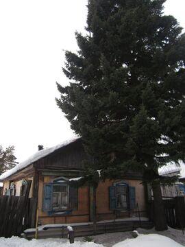 Дом в с.Просвет - Фото 4