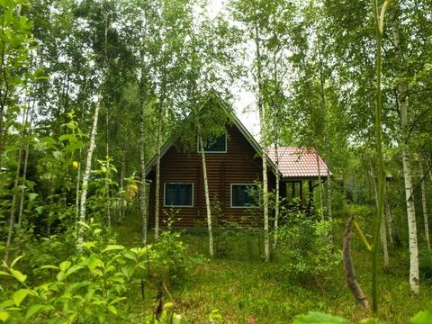 Коттедж, Киевское ш, 105м2, 10 соток в лесу - Фото 1