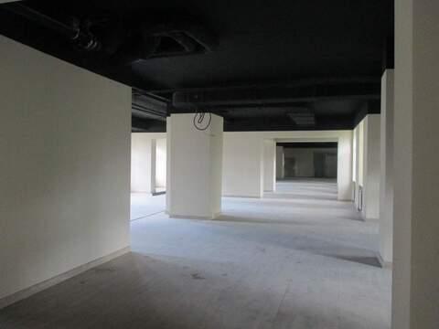 Аренда торгового помещения 460 м2 - Фото 2