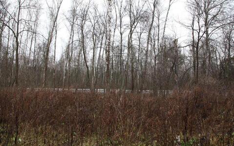 Участок, Калужское ш, 10 км от МКАД, Ватутинки, Коттеджный поселок . - Фото 2