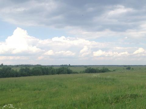 Земельный участок рядом с дер.Луговая - Фото 2