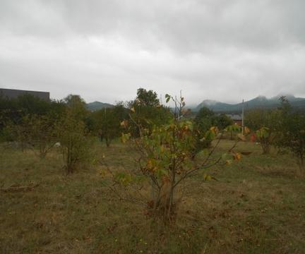 Продажа земельного участка, Железноводск, 10-я линия ул. - Фото 5