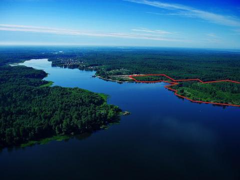 Участок 28 Га с лесом на 1 береговой линии р. Волга - Фото 1