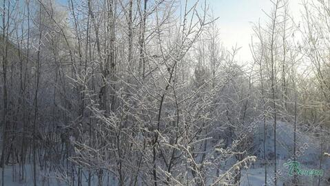 Киевское ш. 28 км от МКАД, Апрелевка, Участок 12 сот. - Фото 5