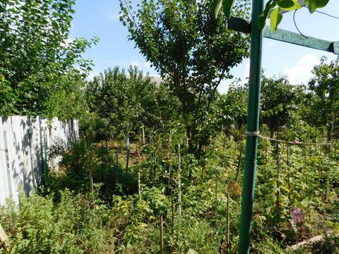 Продажа дачи, Севастополь, ст Родник - Фото 4