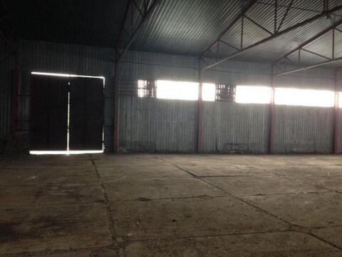 Сдам производственное помещение 700 кв.м, м. Рыбацкое - Фото 4
