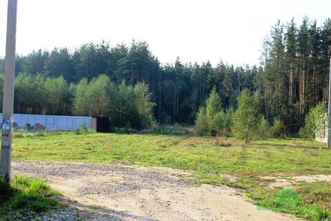 Дачный участок в окружении леса, недалеко от реки - 85 км от МКАД - Фото 1