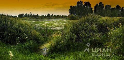 Участок в Курганская область, Кетовский район, д. Белый Яр ул. Боровая . - Фото 1